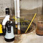 Sump Pump Failure Water Cleanup Michigan